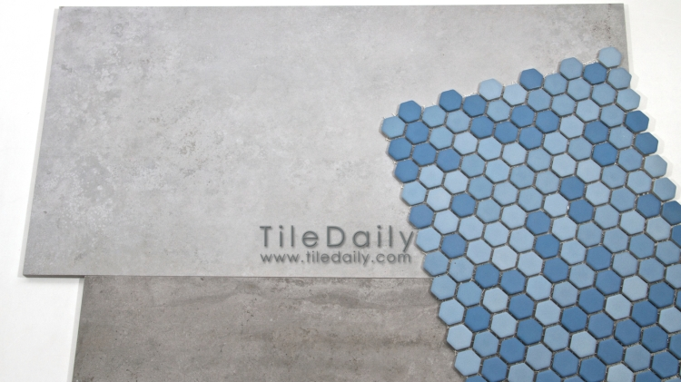 Cement Porcelain Tile and Matte Hex Mosaic